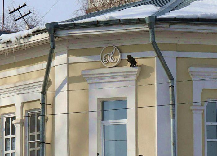 Глазов г. Сова на одном из немногих сохранившихся в городе исторических зданий - доме купца Колотова