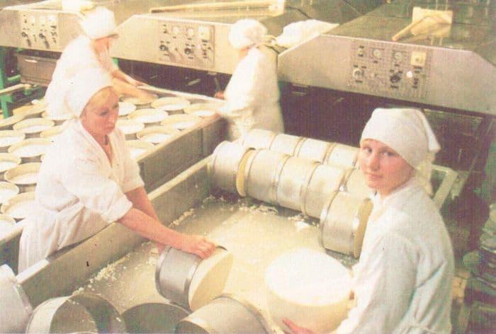 ОАО Можгасыр. В цехе изготовления сыра голландский. 2001 г.