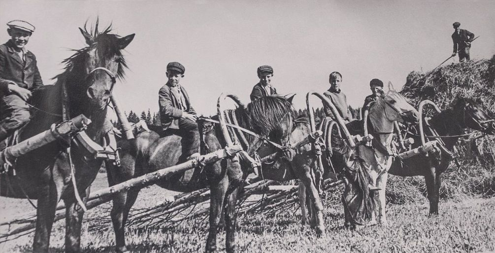 Фотографии Кузнецова Алексея Григорьевича из архива газеты Новый путь, с. Дебёсы. 1966-1975 гг