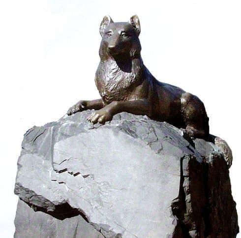 Символ Ижевского зоопарка, бронзовый волк.