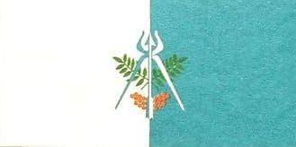 Флаг Ижевска.