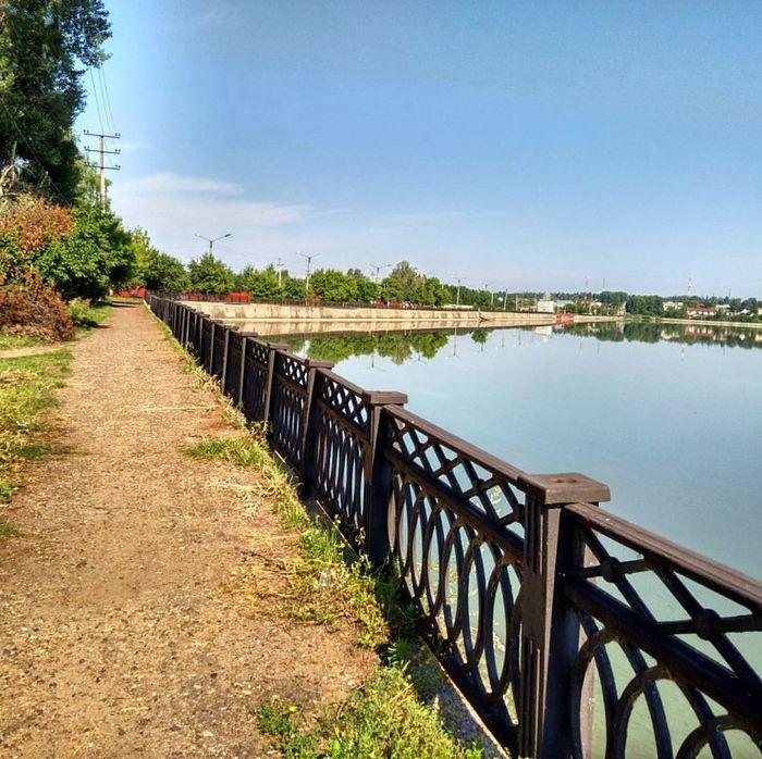 Камбарский пруд. 2017 год.
