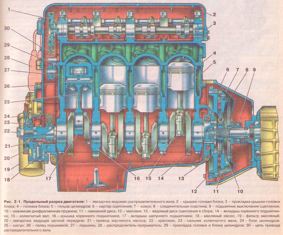 Продольный разрез двигателя ИЖ 2126 Орбита (Ода ) - двигатель 1,7.