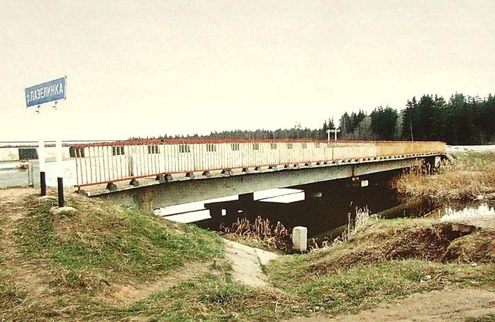 Мостовой переход через р. Пазелинка протяженностью 0,17 км. Построен в 1995 г.
