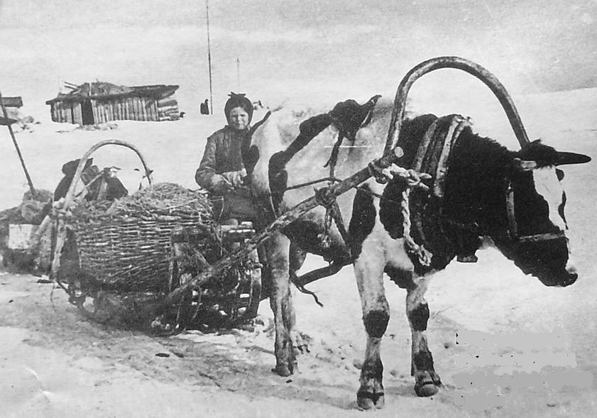 Удмуртский колхоз. 1940 - е годы.