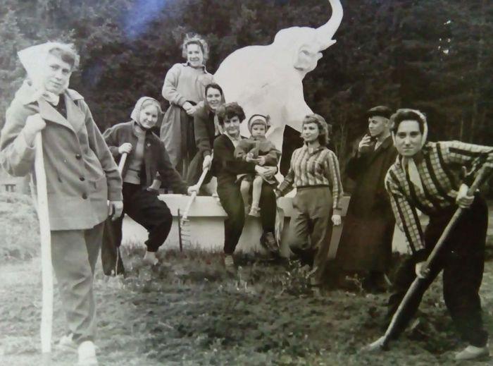 Субботник в парке Кирова, 15 мая 1960 г