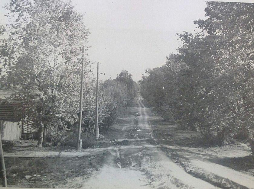"""Улица Жечева (бывшая улица Потерянная) в южном направлении от улицы К. Либкнехта. Она тянулась на юг от Сенной площади и не имела своего номера и словно """"терялась"""" в болоте. Фото: 16 мая 1977 год, ЦГА УР."""