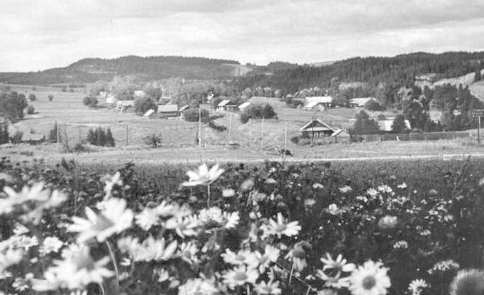 """29 сентября 1978 года. Вид на жилые дома в селе Шаркан. Фотокаталог ГКУ """"ЦДНИ УР""""."""
