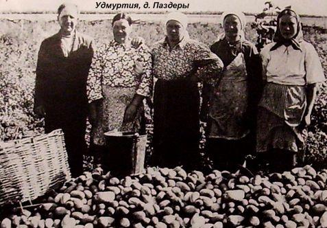 Дер. Паздеры - бывшая деревня, недалеко от с. Перевозного. Воткинский район. Удмуртия.